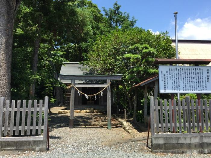 三ケ日町 浜名湖 お土産 観光 遊ぶ 猪鼻湖 おすすめ 初生衣神社 うぶぎぬじんじゃ