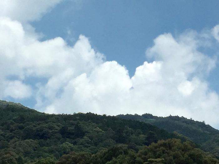 三ケ日町 浜名湖 お土産 観光 遊ぶ 猪鼻湖 おすすめ パラグライダー 浜名湖パラグライダースクール