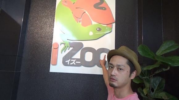 熱海 旅行 男旅 旅 ドライブ 夏 夏休み iZoo モヤさま 亀レース