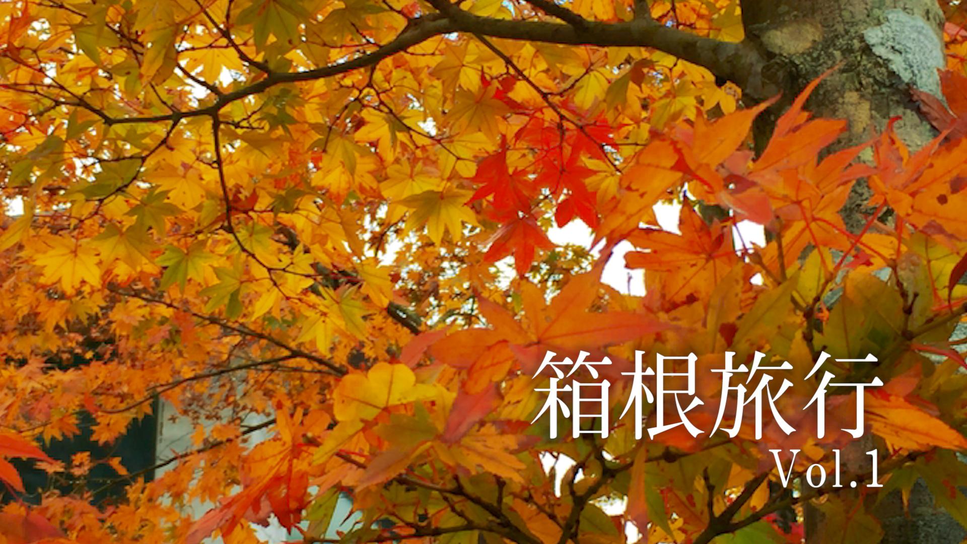 箱根旅行 箱根園 紅葉 芦ノ湖 観光 箱根園水族館