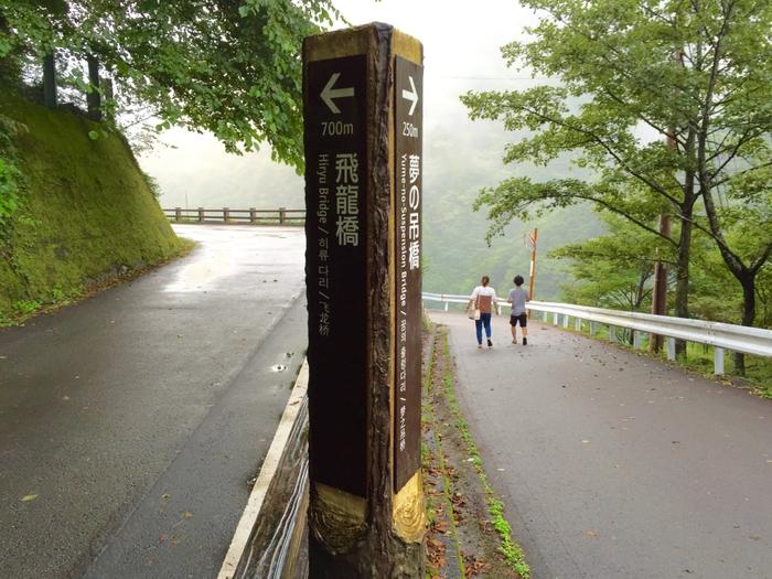 寸又峡 寸又峡温泉 夢の吊橋 吊り橋 観光 遊ぶ
