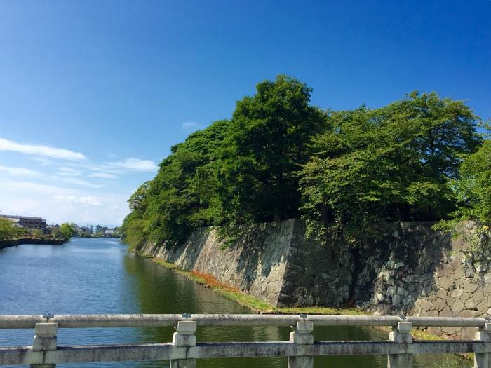 琵琶湖 旅行 男旅 観光 彦根城 城下町 ランチ チョッパーボードとんとん 近江牛 ステーキ ハンバーグ