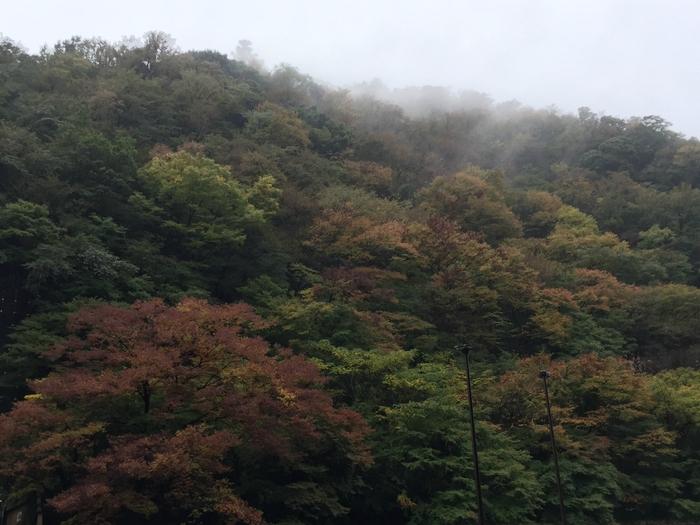 箱根 紅葉 箱根園 ドライブ 観光 旅行