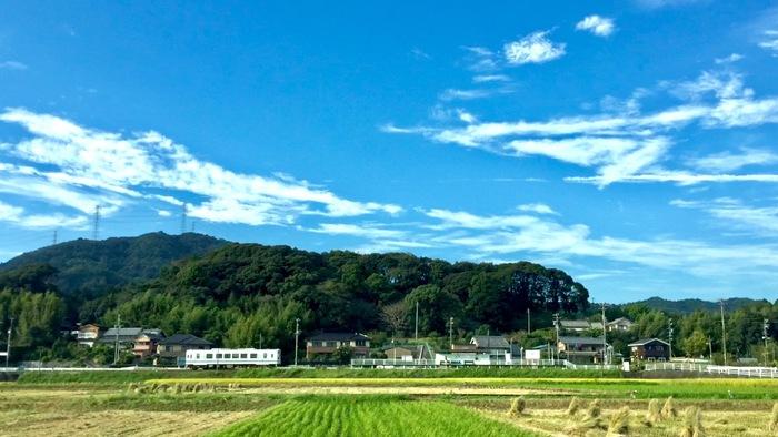 『出没!アド街ック天国』浜松編ランキングまとめ 天竜浜名湖鉄道