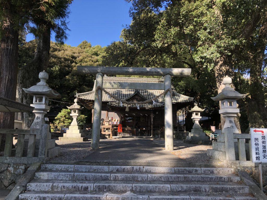 細江神社 パワースポット 巨木 ご神木