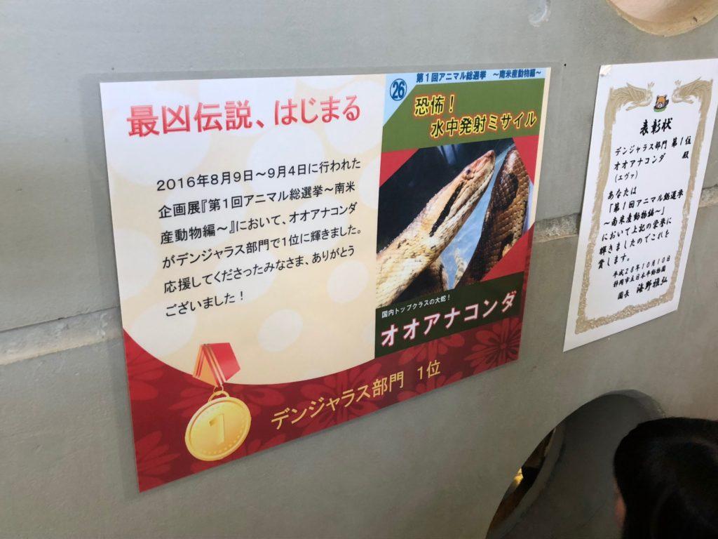 静岡市立 日本平動物園IMG_9249